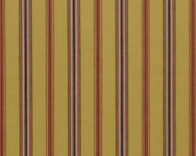 Canfield Stripe Gold